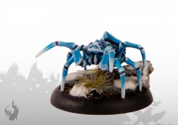 Polar Spider